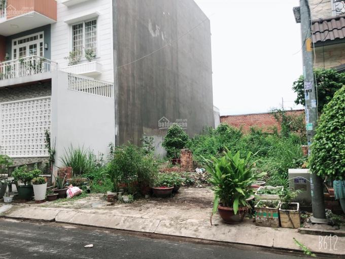 Cần bán gấp đất MT đường Trần Văn Giàu, sổ hồng riêng, DT 100m2 giá 3 tỷ, công chứng trong ngày ảnh 0