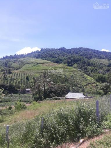 Bán đất làm du lịch nghỉ dưỡng tuyệt đẹp tại Cao Phong, Hòa Bình có diện tích khủng 140ha