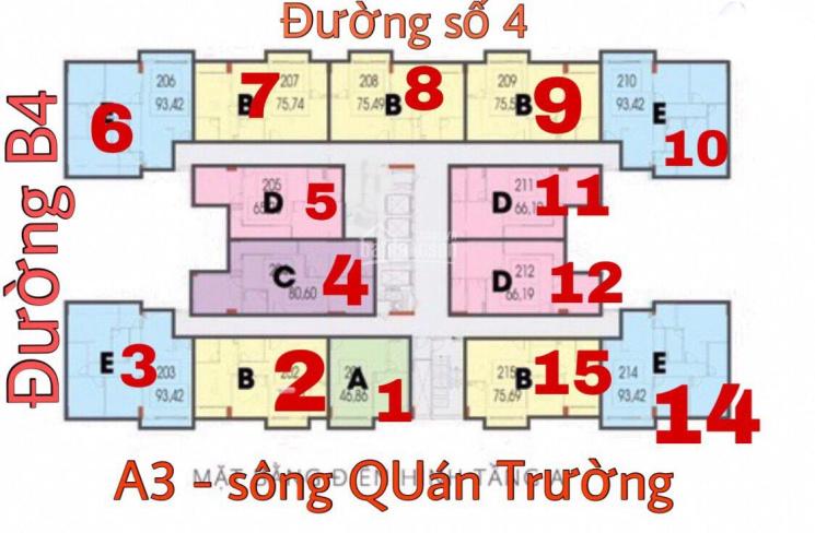 Giỏ hàng căn hộ CT4 Phước Hải đang cần bán nhanh