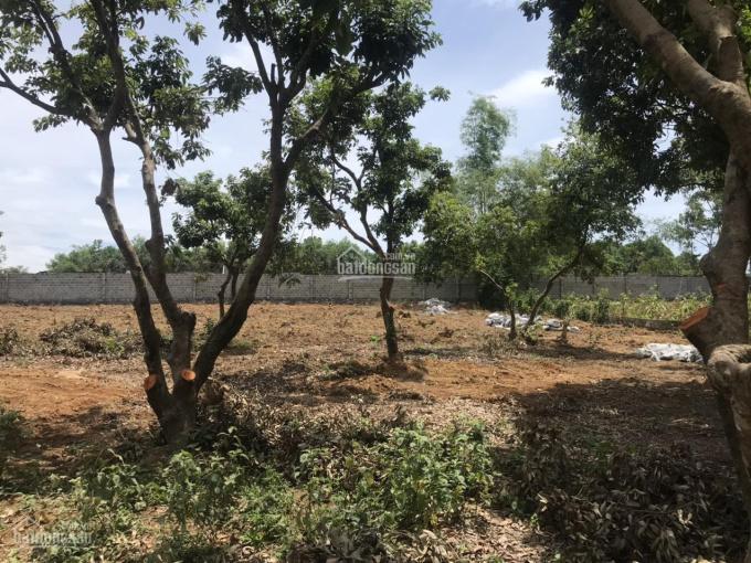 Sở hữu lô đất mặt đường QL6 cực đẹp tại Lương Sơn, Hòa Bình