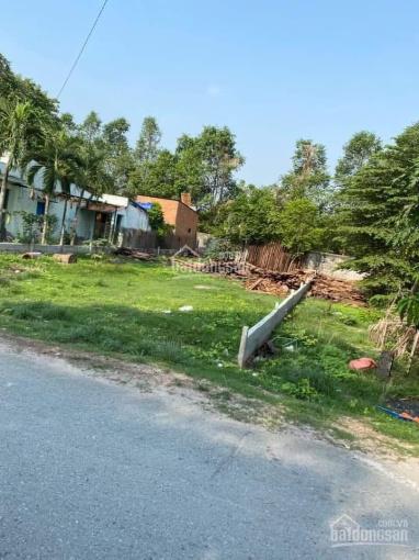 Đất ngay Trường Lai Hưng 195m2, 505tr. Có sổ sẵn mua sang tên liền