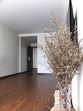 Cho thuê chung cư đủ đồ Homeland, Long Biên, 70m2, 2 phòng ngủ, giá 8 triệu/tháng