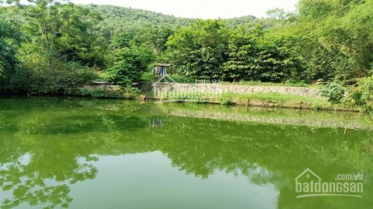 Cần bán 4000m2 đất Đông Xuân làm nhà vườn nghỉ dưỡng