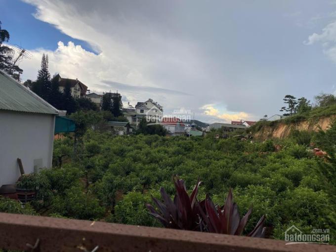 Bán đất liền kề KQH Phạm Hồng Thái, thành phố Đà Lạt giá rẻ