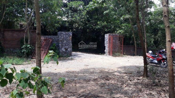 Nhượng 5697m2 đất gần hồ Đồng Chanh, có ao Lương Sơn, Hoà Bình