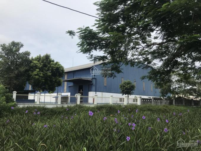 Hàng chính chủ cho thuê kho xưởng tại KCN Tiên Sơn, DT 1500m2 giá 70k/m2/th