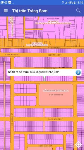 Bán gấp lô đất 10x26.5m, SHR, thuộc dự án Gold Hill, tại thị trấn Trảng Bom
