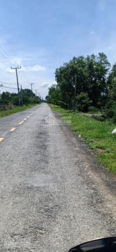 Bán đất mặt tiền đường Lý Nhơn, An Thới Đông, Cần Giờ
