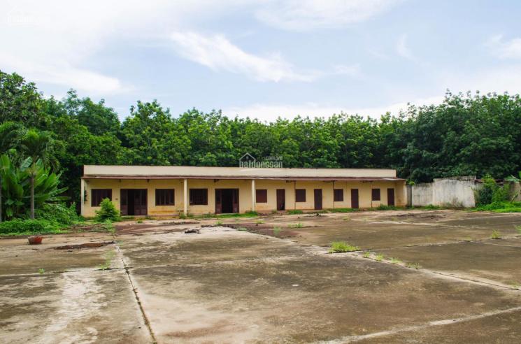 Bán nhà xưởng 7000m2 đất sản xuất kinh doanh gần sân bay Long Thành trục quốc lộ 56