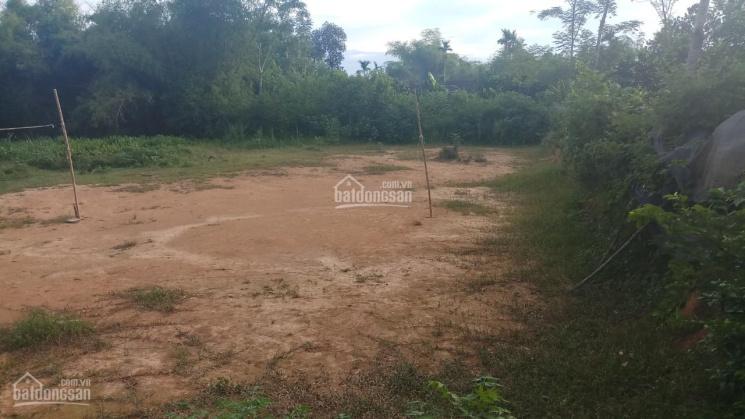 1546m2 có 100m2 đất ở giá cực rẻ tại xã Nhuận Trạch, Lương Sơn, Hòa Bình