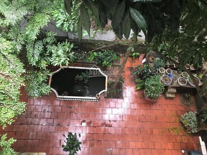 Bán đất ngõ 495 Nguyễn Trãi, Thanh Xuân 204m2 x MT 12,5m, xây biệt thự, CC mini, VP. 0902139199