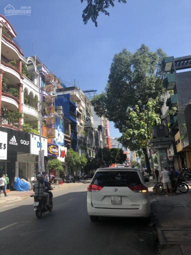 Bán biệt thự 2 mặt tiền tuyệt đẹp khu đường Hoa Phú Nhuận, ngay Phan Xích Long. DT 10x22m ảnh 0