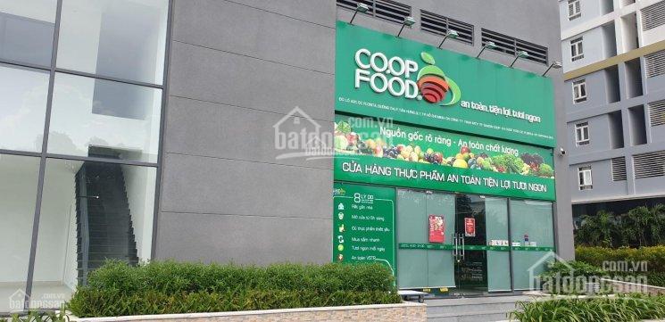 Bán gấp shophouse kinh doanh MT Nguyễn Lương Bằng Phú Mỹ Hưng Q7. Giá 9 tỷ/139m2, LH: 0903647344 ảnh 0