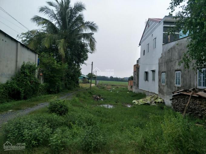 Bán nhanh lô đất 414m2 thổ cư, sổ hồng riêng, xã Phước Vĩnh An gần ngay Tỉnh lộ 8, giá 1 tỷ 450tr ảnh 0