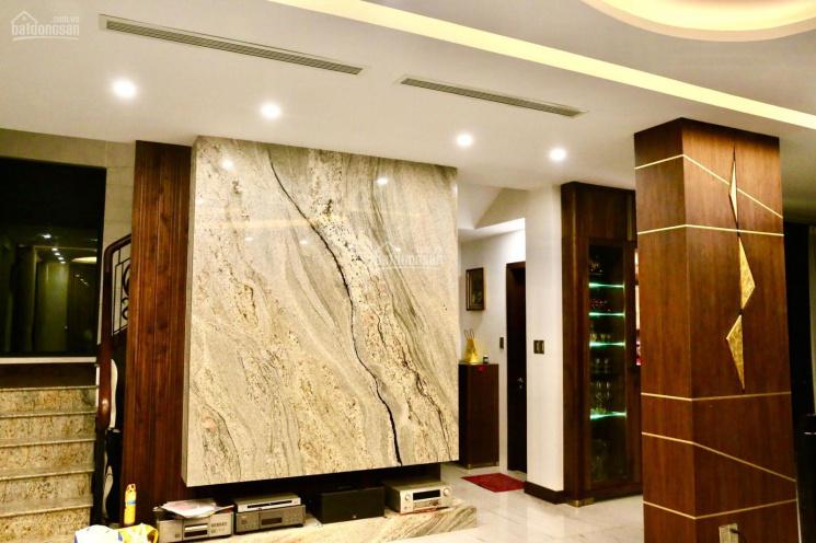 Độc quyền bán căn biệt thự đơn lập full nội thất diện tích khuôn viên 480m2 giá bán tốt nhất dự án ảnh 0