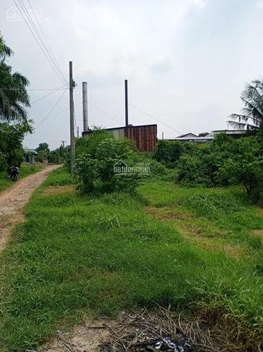 Cần bán gấp đất xã Tân Phú Trung, H. Củ Chi gần đường Nguyễn Thị Lắng. 1846m2 giá 10tỷ ảnh 0