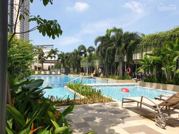 Cho thuê biệt thự - nhà phố Palm Residence - Palm City nội thất cao cấp giá chỉ 30 triệu/tháng ảnh 0