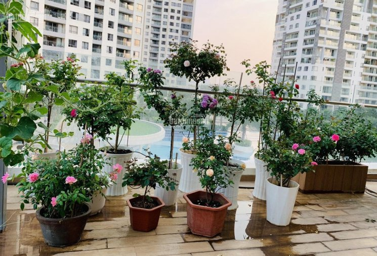 Căn hộ Đảo Kim Cương gồm 1PN + 1PLV, 2WC Tháp Brilliant, tháp sát sông Sài Gòn 0939 053 749 ảnh 0
