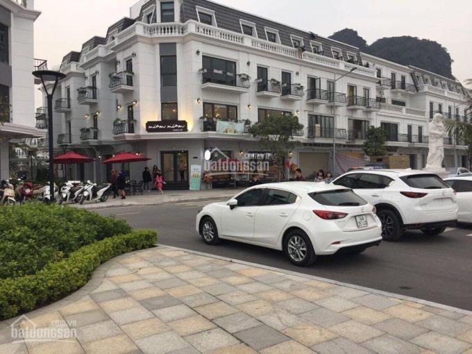 Tổng hợp quỹ căn bán cắt lỗ của Vinhomes Dragon Bay - Bến Đoan, LH: 0966.331.789 ảnh 0