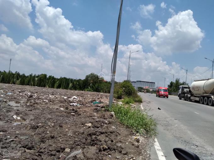 Cho thuê đất mặt tiền Nguyễn Hữu Thọ, DT: 5.000m2 ảnh 0