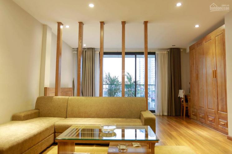 Cho thuê căn hộ gần Keangnam, Trần Duy Hưng, Nguyễn Chí Thanh giá từ 7 tr/th, nội thất cao cấp ảnh 0