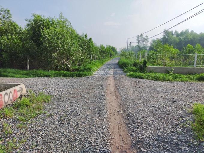 Chính chủ bán đất sạch mới tách sổ Phước Khánh, Nhơn Trạch, đường hiện hữu ô tô, 1,68 tỷ/1000m2 SHR ảnh 0