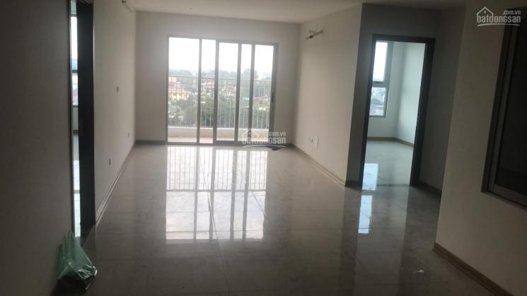 Bán gấp căn hộ 3PN - dự án IA20 - giá gốc 16 triệu/m2 ảnh 0