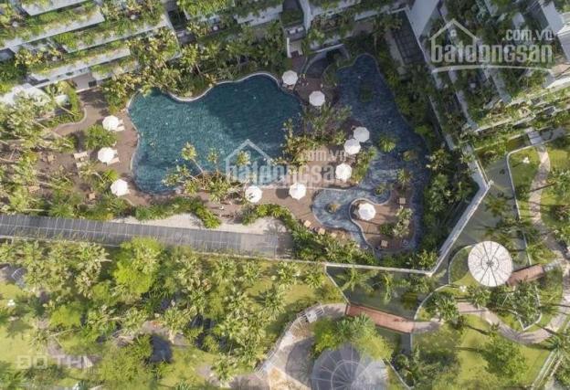 Chính chủ bán căn BT tầng 2, tòa Forest In The Sky 1 - Flamingo Đại Lải - bán lại giá rẻ 100m2 ảnh 0