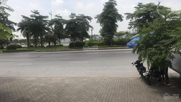 Bán đất thổ cư sổ đỏ mặt tiền 12,76m mặt đường Lý Sơn, Thượng Thanh, Long Biên, Hà Nội ảnh 0