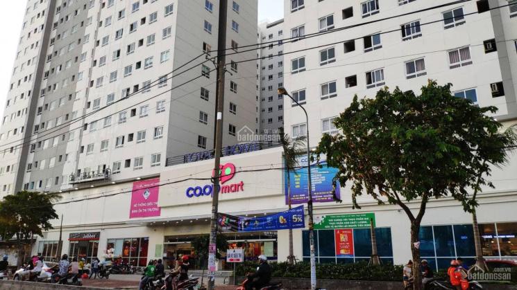 Cập nhật giá bán chung cư Topaz Home Q12, giá từ 1.2 tỷ/ căn 2PN. LH: 0948614321 ảnh 0