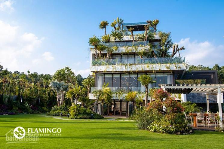 Mở bán 7 căn biệt thự Tổng Thống - Flamingo Đại Lải. 3000m2, mặt tiền 50m, có sân golf