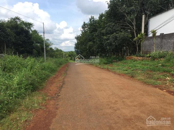 Cần bán 2ha đất mặt tiền đường nhựa bên cạnh trạm y tế Đạo Nghĩa, Dăk R'Lấp, Đắk Nông ảnh 0