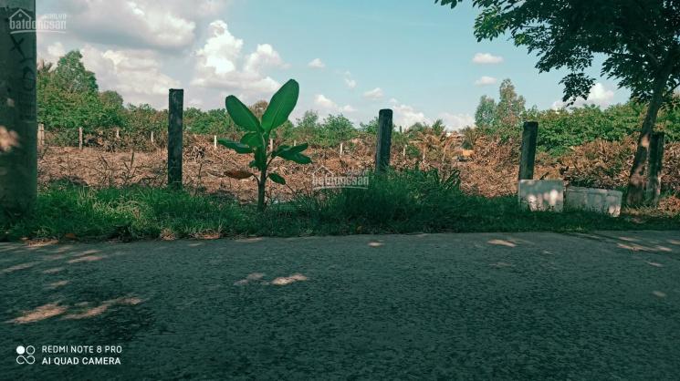 Cần bán gấp 1390m2 (có 652m2 thổ cư) MT đường Liên Ấp 2 - 3, xã Hiệp Phước, huyện Nhà Bè ảnh 0