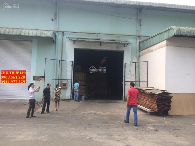 Cho thuê nhà xưởng Phường An Phú Đông, Quận 12, DT: 800m2, giá 35 tr/tháng, LH 0944.977.229 ảnh 0
