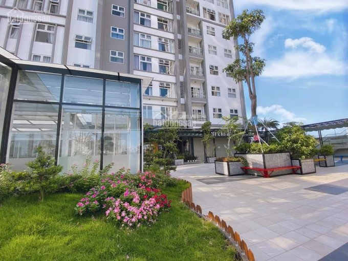 Còn 1 căn duy nhất 3PN lớn tại Xi Grand Court 109m2 giá 19.5tr/tháng. Hotline PKD CĐT 0909 838 005 ảnh 0