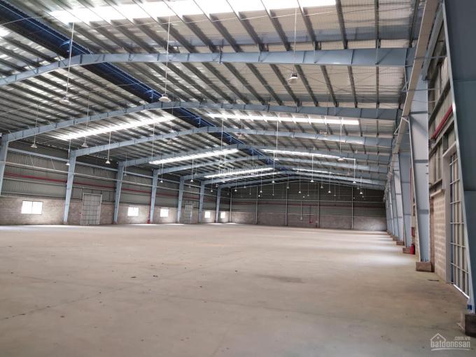 Công ty Hoa Phượng cho thuê Kho, xưởng tại Phú Mỹ, Bà Rịa - Vũng Tàu. (100m2 đến 20.000m2) ảnh 0