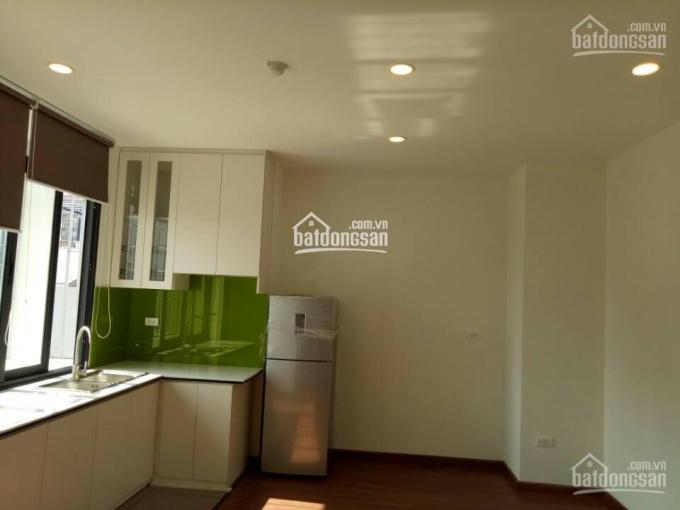 Chính chủ cho thuê chung cư mini đủ đồ DT 40-65m2, phố Đông Các, La Thành, Ô Chợ Dừa, Khâm Thiên ảnh 0