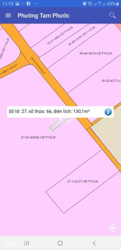 Đất nền sổ hồng riêng P. Tam Phước, TP. Biên Hoà 6,8tr/m2. Thổ cư 100% ảnh 0
