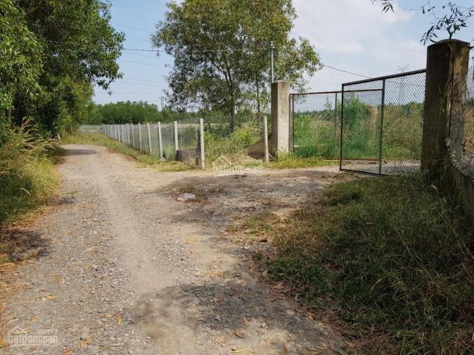 Bán gấp đất thủy sản Phước An, Nhơn Trạch MT đường dân sinh, giá rẻ bán trong tuần, 280tr/1000m2 ảnh 0