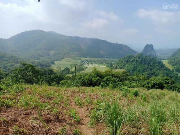 Cần chuyển nhượng đất trang trại và nghỉ dưỡng tại Lâm Sơn Lương Sơn, Hòa Bình, dành cho các nhà đt ảnh 0