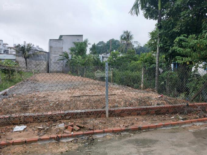 Bán đất rẻ nhất 31tr/m2 chưa qua đầu tư, kế bên Vinhomes, HXH Nguyễn Xiển, Long Thạnh Mỹ, Quận 9 ảnh 0