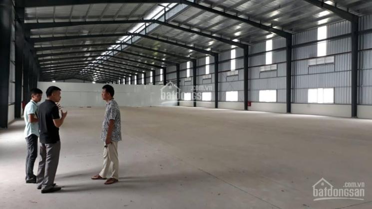 Cho thuê kho xưởng 1000m2 mặt tiền đường Phan Huy Ích, P. 14, Gò Vấp ảnh 0