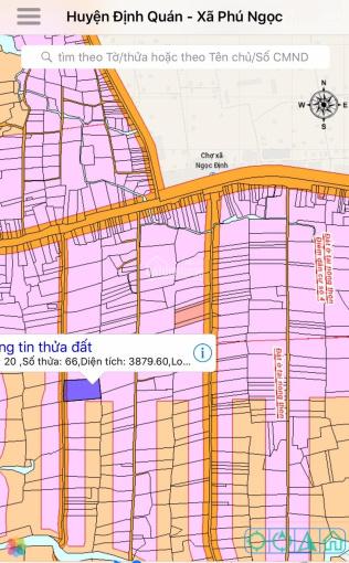 Hot: Bán gấp 5000m2 trong khu dân cư, quy hoạch thổ cư 4500m2, cách Quốc Lộ 20 chỉ 300m, giá 3,2 tỷ ảnh 0