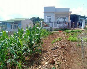 Chính chủ cần bán lô đất giá đầu tư tại Di Linh, Lâm Đồng ảnh 0