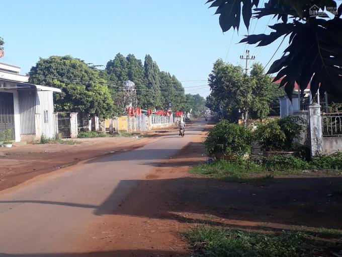 Cần bán đất đường nhựa liên xã Ea Kmut 13,2x30m giá 50tr/m2 ảnh 0