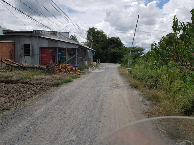 Bán đất vườn MT đường lộ Lộc Trung, xã Mỹ Lộc, Cần Giuộc, DT 1000m2 ảnh 0