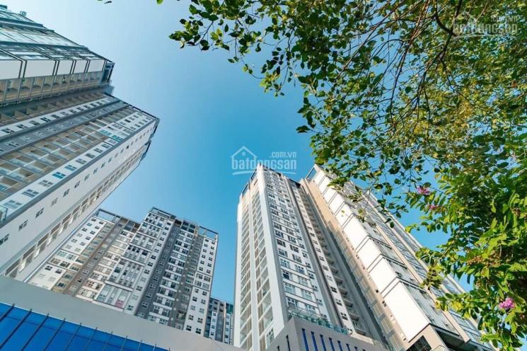 Xi Grand Court chỉ còn 2 căn 3PN lớn - DT 105m2 giá 6.350 - 6.6 tỷ. Hotline PKD CĐT 0909 838 005 ảnh 0