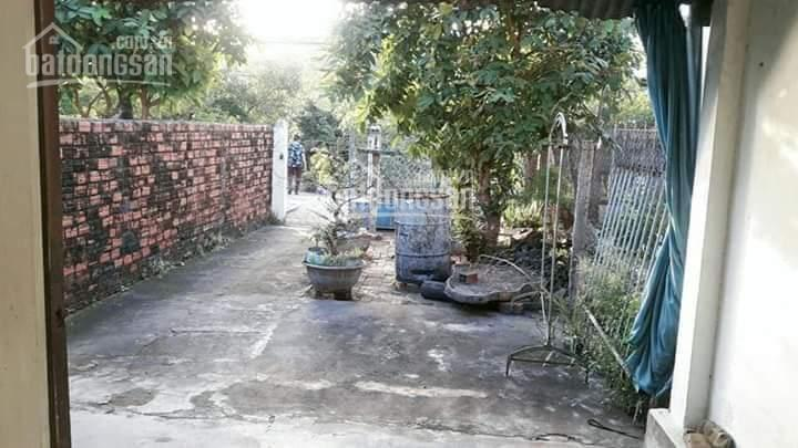Chính chủ cần tiền bán gấp căn nhà cấp 4 gần nhà máy gạch Tuynel Tuy Hòa, Phú Yên ảnh 0