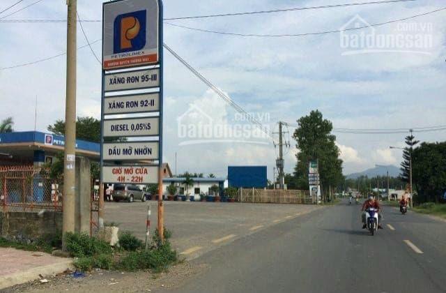 Bán đất mặt tiền đường Hắc Dịch Tóc Tiên 5x50,10x40,12x25... 090 8983 616 ảnh 0