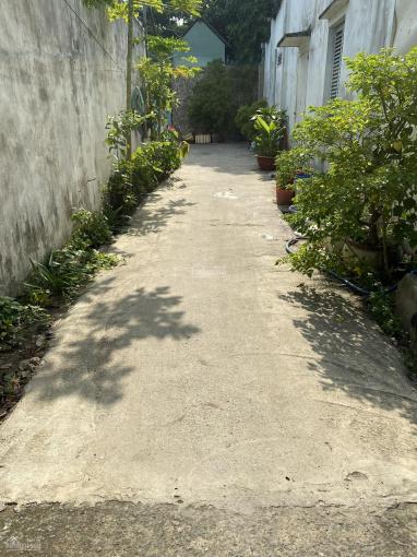 Tôi cần bán căn nhà 1 trệt 1 lầu trên đường Nguyễn Trung Nguyệt, có SHR ảnh 0